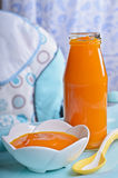 Orange lumineuse de purée Photos stock
