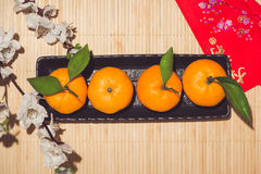 Orange for Lunar Chinese new year. Tet Holiday Concept. Royalty Free Stock Photos