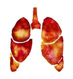 Orange lungs with galaxy effect. Hand painted human lungs silhouette with galaxy watercolor effect. Watercolor dark orange illustration on white backdrop stock images