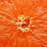 Orange macro Stock Images