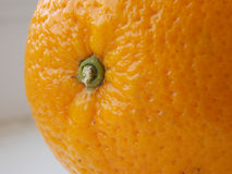 Orange. Macroshooting. Royalty Free Stock Photography