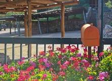 Orange mailbox. In a geranium flowerbed Stock Photo