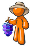 Orange Man with Grapes Vineyard Worker Hat Royalty Free Stock Images