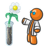 Orange Man Scientist with Test Tube and Daisy Royalty Free Stock Images