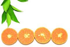 Orange mandarin- eller tangerinfrukter, med gröna sidor på vit bakgrund Royaltyfri Foto