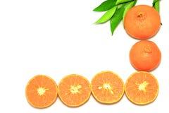Orange mandarin- eller tangerinfrukter, med gröna sidor på vit bakgrund Fotografering för Bildbyråer