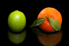 Orange mandarin and green lime on pure black background. Royalty Free Stock Photos