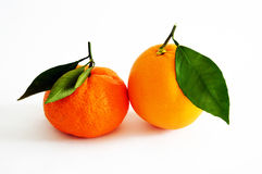 Orange and mandarin pictures on the most beautiful and best white background Stock Photos
