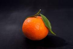 Orange mandarin on pure black background. Royalty Free Stock Photography