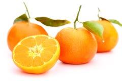 Orange mandarin Stock Images