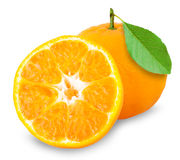 Orange mandarin Royalty Free Stock Photos