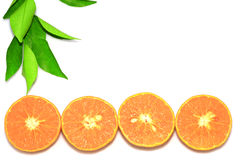 Orange mandarin or tangerine fruits, with green leaves on white background. Royalty Free Stock Photo