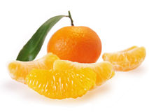 Orange Mandarine Stockbilder