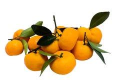Orange Mandarine in der Gruppe Lizenzfreie Stockfotografie