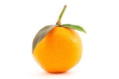 Orange Mandarine mit Blättern Lizenzfreies Stockfoto