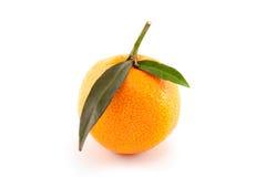Orange Mandarine mit Blättern Lizenzfreie Stockbilder