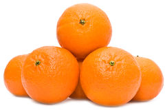 Orange Mandarinen Lizenzfreies Stockfoto