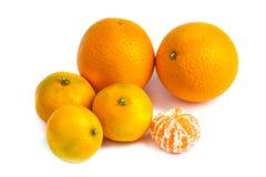 Orange Mandarinen- oder Tangerinefrucht lokalisiert auf weißem Hintergrund Lizenzfreie Stockfotos