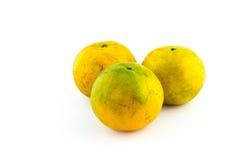 Orange mandariner på en vit bakgrund Arkivfoto