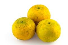 Orange mandariner på en vit bakgrund Royaltyfri Bild