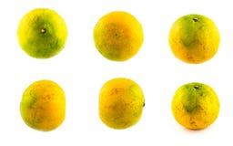 Orange mandariner på en vit bakgrund Royaltyfria Foton