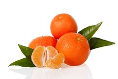 Orange mandarines, clementines, tangerines or small oranges with one peeled and cut in half with leaves Royalty Free Stock Images