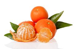 Orange mandarines, clementines, tangerines or small oranges with one peeled and cut in half Royalty Free Stock Photos
