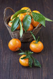 Orange mandarines heap in  wicker basket. Ripe tangerine fruit and wire basket full of mandarines on wooden background Stock Photography