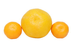 Orange and mandarins Royalty Free Stock Images