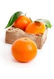 Orange mandarins Stock Photo