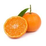 Orange mandarins Royalty Free Stock Images
