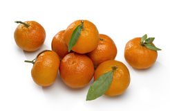 Orange mandarins Royalty Free Stock Images