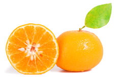 Orange mandarins Stock Images