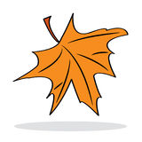 Orange maple leaf with grey shadow Stock Photos