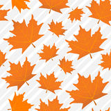 Orange maple leaves seamless pattern, a background Royalty Free Stock Photo