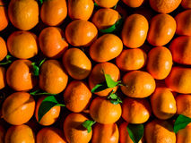 Orange Market Royalty Free Stock Image