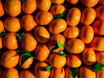 Orange Market. Fresh Oranges in close up details Royalty Free Stock Image