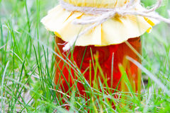 Orange Marmelade Jar in green grass Stock Photos