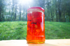 Orange Marmelade Jar Stock Photography