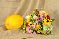 The orange melon and autumn flowers against rough Stock Photo