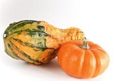 Orange mini pumpkins. Two mini pumpkins on white background Stock Photography