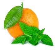 Orange and mint Stock Photos