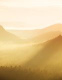 Orange misty morning, view over rock  to deep valley full of light mist. Dreamy spring landscape within daybreak Stock Images