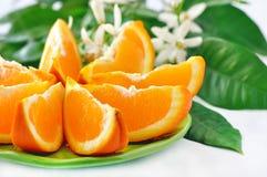Orange mit Blättern und Blüte Stockbilder