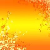 Orange mit Blumenhintergrund Lizenzfreies Stockbild