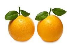 Orange mit den Blättern lokalisiert auf weißem Hintergrund Über Weiß Stockbild