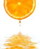 Orange mit einem Tropfen. Stockfotografie