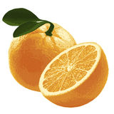 Orange mit grünen Blättern Stockbild