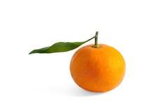 Orange mit Zweig Lizenzfreie Stockbilder