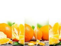 Orange mix Stock Image